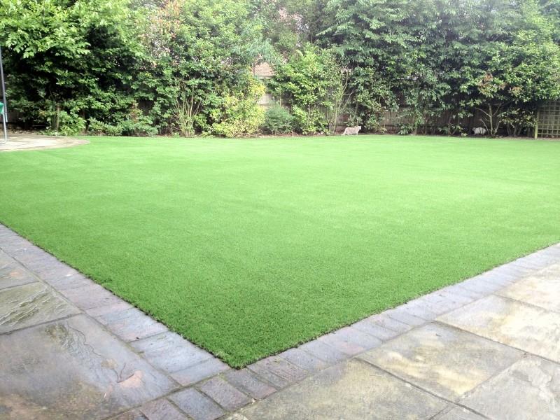 Langley Park Grass