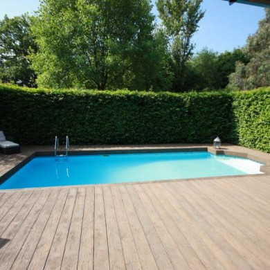Artificial Grass Lawns And Turf By Carrick 187 Swimming Pool