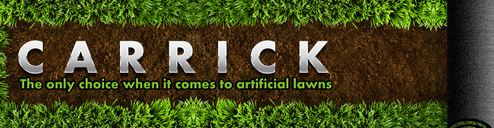 Artificial Grass from Carrick